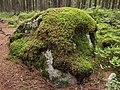 Kangasvuori nature trail - stone.jpg