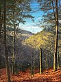 Ketchum Run Gorge (3) (15521218593).jpg