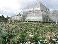 Kew Gardens - London - September 2008 (2952001177).jpg