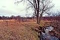 Kinnickinnic Wet Prairie.jpg