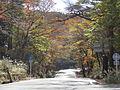 Kirishima Park Line 480.JPG
