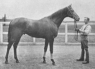 Kirkconnel (horse) British-bred Thoroughbred racehorse