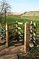 Kissing Gate on the Viking Way at Fulletby - geograph.org.uk - 402173.jpg
