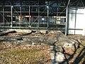 Kleine Thermen auf dem Lindenberg - panoramio.jpg