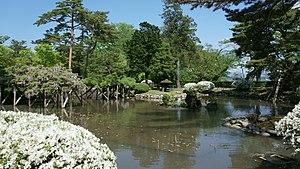 Kogetsu-pond in Senshu Park 20180520.jpg