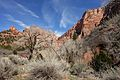 Kolob Canyons, Walk to the Kolob Arch (Zion National Park) (3439878213).jpg
