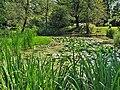 Kraków - ogród botaniczny....jpg