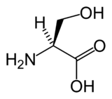 Skeletal formula of serine