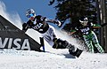 LG Snowboard FIS World Cup (5435927402).jpg