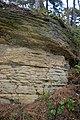 LSG Sudmerberg - Kreide-Sandstein (10).jpg