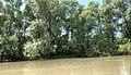 Lacul Beleu priveliște 7.jpg
