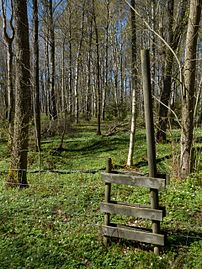 Ladder stile in Gullmarsskogen.jpg