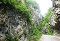 Lajanura Gorge (G.N. 2009).jpg