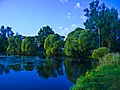 Lake - panoramio (16).jpg