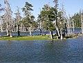 Lake Cleveland - panoramio.jpg