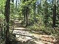 Lake Frierson State Park Paragould AR 04.jpg