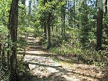 Lake Frierson State Park Wikipedia