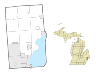 Former civil township in Michigan, United States