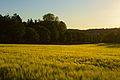 Landschaft (9338863716).jpg