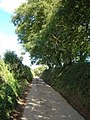 Lane above Lower Sigdon - geograph.org.uk - 230072.jpg
