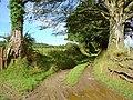 Lane to Pen-yr-allt, Llanfair Nant-gwyn - geograph.org.uk - 921775.jpg