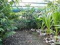 Laoac,Pangasinanjf8580 08.JPG