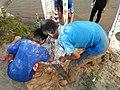 Laos-10-111 (8685831395).jpg