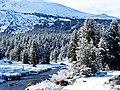 Last Night's Snow, Tioga Pass, Yosemite NP 5-20-15 (17901352428).jpg