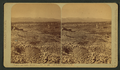 Leadville, from California Gulch, by Thurlow, J., 1831-1878.png