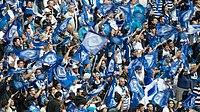 Les supporters du Castres Olympiques (8918158176).jpg