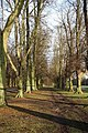 Lime Avenue - geograph.org.uk - 1602283.jpg