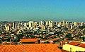 Limeira vista (cropped).jpg