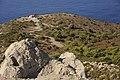 Lizard - panoramio (3).jpg