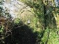Llanmaes- Footpath along a sunken lane - geograph.org.uk - 1072278.jpg