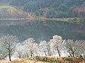 Loch Doine - geograph.org.uk - 355203.jpg