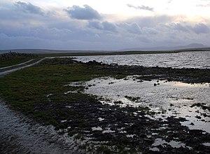 Loch of Harray - Looking southwards along the shoreline