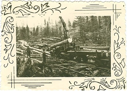 Lithuanian deportees preparing logs for rafting on the Mana River Logging at Small Ungut.jpeg