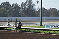 Los Alamitos Sept 2014 IMG 6719 (15131078869).jpg