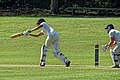 Loughton CC v Ardleigh Green & Havering-Atte-Bower CC at Loughton, Essex, England SX60 34.jpg