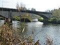 Mündung Murg Rohrerbrücke P1020730.jpg
