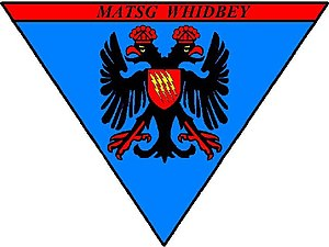 Marine Aviation Training Support Group 53 - MATSG-53 insignia
