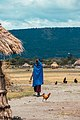 Maasai lifestyle.jpg