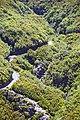 Madeira - ER110 Plateau Route Levada das 25 Fontes 2 (48127465647).jpg