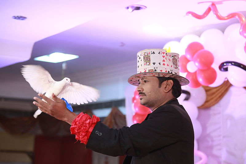 File:Magician Ravi -International Performer.JPG