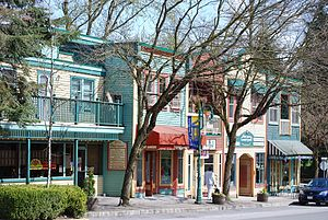 Fort Langley - Historic heritage buildings on Mavis Avenue