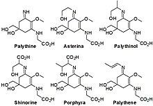 Mycosporine Like Amino Acids | RM.