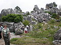Major Stone Forest NE outer area 7.JPG