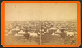 Man on a hill overlooking Boston, by Evans & Soule.png