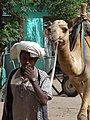 Man with Camel - Shire - Ethiopia (8699565362).jpg