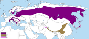 alt=Description de l'image Map of distribution of Nucifraga caryocatactes.png.